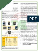 Determinacion de Reacciones de Los Carbohidratos en Presencias de Almidón