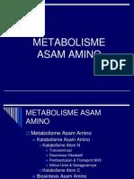 13. Metabolisme as.amino
