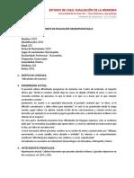 Modelo Informe NPS Word