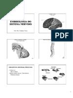 aula 01 Sistema Nervoso - Embriologia Neuroanatonia.ppt.pdf