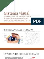 Sistema visual  DIAPOSITIVAS.pptx