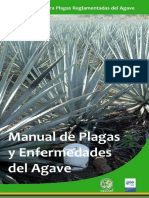 Manual de Agave Mezcalero