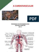 Sistema Cardiovascular Histoembriologia Copia
