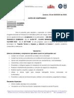 03 MODELO CARTA DE COMPROMISO TRAYECTO I.doc