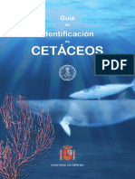 Guía Identificación Cetáceos