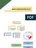 Síndromes Mesencefálicos EXPO