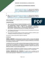 Documento constitucion consorcio unal
