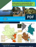 ADC disueño colectivo 2019.pdf