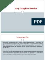 Cerebelo y Ganglios Basales (1)