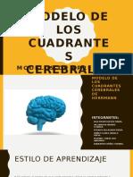 Cuadrantes cerebrales de Herrmann.pptx