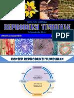 Reproduksi-Tumbuhan