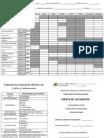 Tarjeta de Vacuna