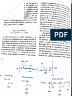 lectura electroforesis pág 1.pdf