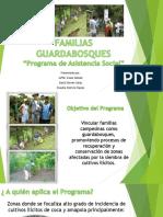 FAMILIAS GUARDABOSQUES.pptx
