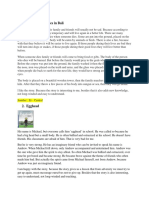 Safira Indah_20180420128_D_Tugas Review Bahasa Inggris