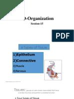 3D Organization.pptx