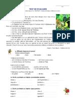 TEST 2 LLR,Calatorie Pe Un Nor, CL. a III-A