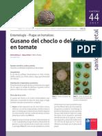 uy15.pdf