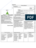 Historia Natural de La Enfermedad Cancer Cervicouterino Docx (1)