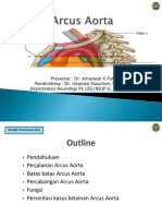 arkus aorta