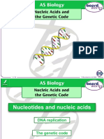 As Nucleic Acids & the Genetic Code