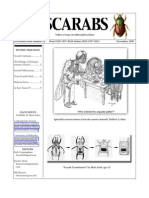 Scarabs 22