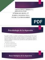 Psicobiologia de La Depresión Isa
