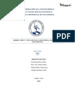 Proyecto de Inversion Producción y Venta de Palto Informe