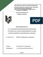 diplom_kot_kin.doc