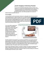 Scope of Diagnostic Imaging in Veterinary Practice - Copy