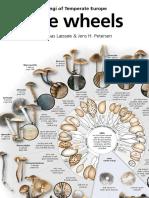 FungiOfTemperateEurope Wheels
