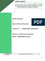PDF Entreprise Et Son Environnement