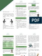 Folleto COPASST.pdf
