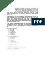 TENGKORAK DAN PERGELANGAN KAKI.pdf