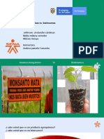 Proceso de Obtencion de Bioinsumos (1)