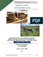 Perfil_de_proyecto_mejoramiento_tecnico.pdf
