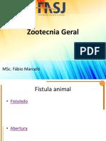 4-FM_Taxonomia dos animais domésticos.pdf