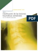 3.3_clasificacion de Las Lesiones Traumaticas Vertebrales