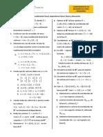 2 Combinación Lineal.pdf
