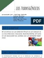 Bioética Los Transgénicos