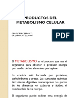 Productos Del Metabolismo