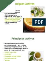 principios activos plantas