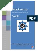 01Profile PMCS.pdf