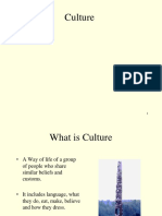 culture power ppt