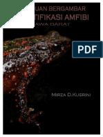 Panduan Bergambar Identifikasi Amfibi