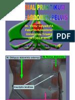 PDF TUTORIAL PRAKTIKUM MODEL SISTEM  DIGESTIVUS 10-2010.pdf