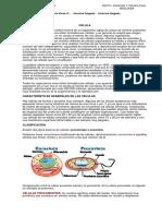 Documento 1 sobre las celulas.pdf