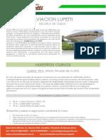 Aviación Lupetti Información Cursos Con Costos 2018