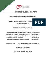 INDIVIDUO Y MEDIO AMBIENTE 3