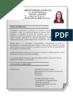 HOJA DE VIDA  - 1